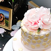 Wauconda Photographer Wedding Shower Susan C 7.16.16