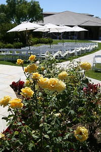 1008091-0018    MOORPARK, CA - AUGUST 14: The Courtney Peldon and Bradley Lieberman Wedding Day Celebration on August 14, 2010 in Moorpark, California. (Photo by Ryan Miller/Capture Imaging)