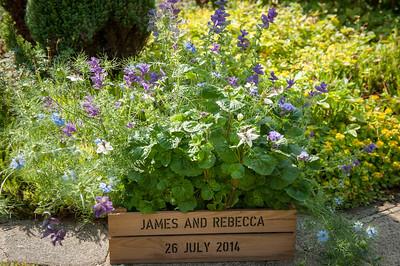 James & Rebecca  119