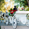 Wedding -528