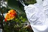 Keshwah_Wedding-9