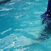 GoPro-Pool Vision