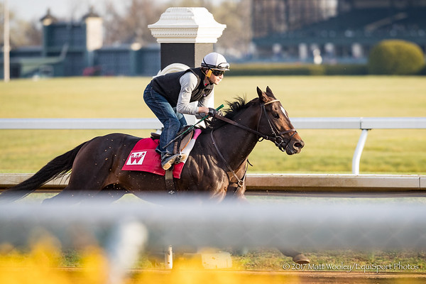 McCraken (inside, Ghostzapper), Brian Hernandez up, works at Keeneland 3.27.17.