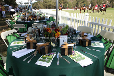 1208202-012     PACIFIC PALISADES, CA - AUGUST 12: The 2012 Will Rogers Dog Iron Polo match held at the Will Rogers State Park on August 12, 2012 in Pacific Palisades, California. (Photo by Ryan Miller/Capture Imaging)