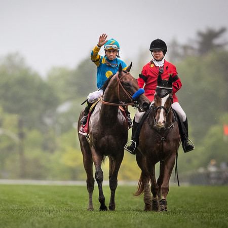 American Pharoah wins The Preakness Stakes at Pimlico Park on 5.16.2015. Victor Espinoza up, Bob Baffert trainer, Zayat Stables owners.