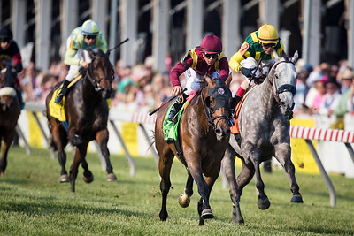 Catholic Boy (More Than Ready) wins the Dixie Stakes (G2) at Pimlico on 5.18.2019. Javier Castellano up, Jonathan Thomas trainer, Robert LaPenta, Madaket Stables, Siena Farm and Twin Creeks Stables owners.