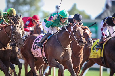 Engage (Into Mischief) wins the Stoll Keenon Ogden Phoenix (G2) at Keeneland on 10.4.2019. Jose Ortiz up, Steve Asmussen trainer, Woodford Racing owner.