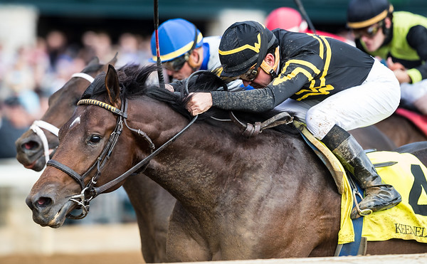 Hawaiian Noises (#4, Super Saver), Kent Desormeaux up, wins a MSW at Keeneland 10.13.18. Wesley Ward trainer and owner.