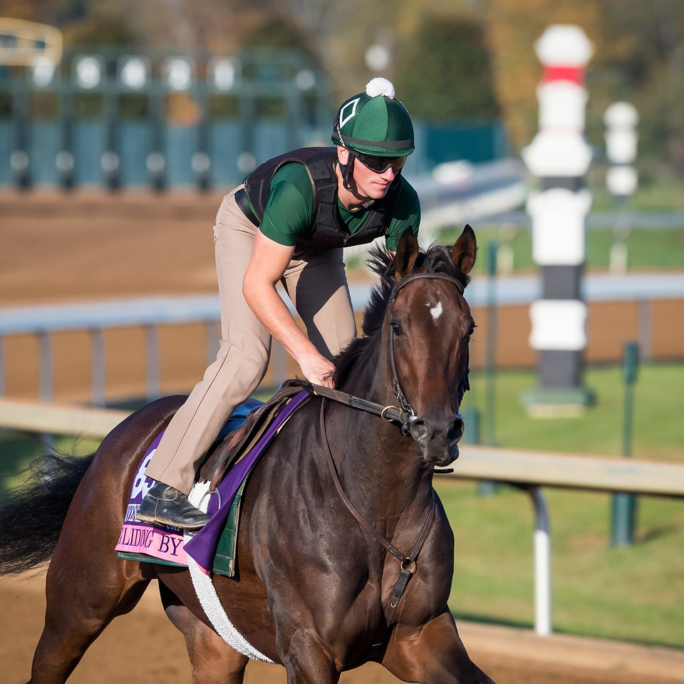 Gliding By at Keeneland 10.23.15.