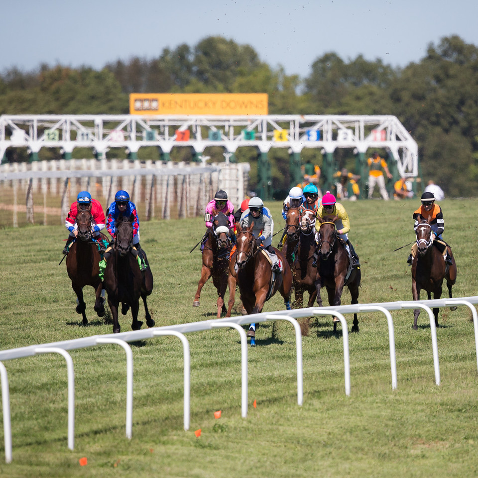 a 6 furlong race at Kentucky Downs. The horse break out of the gate and go into a right hand turn and down a hill before turning left and heading into the long home stretch.