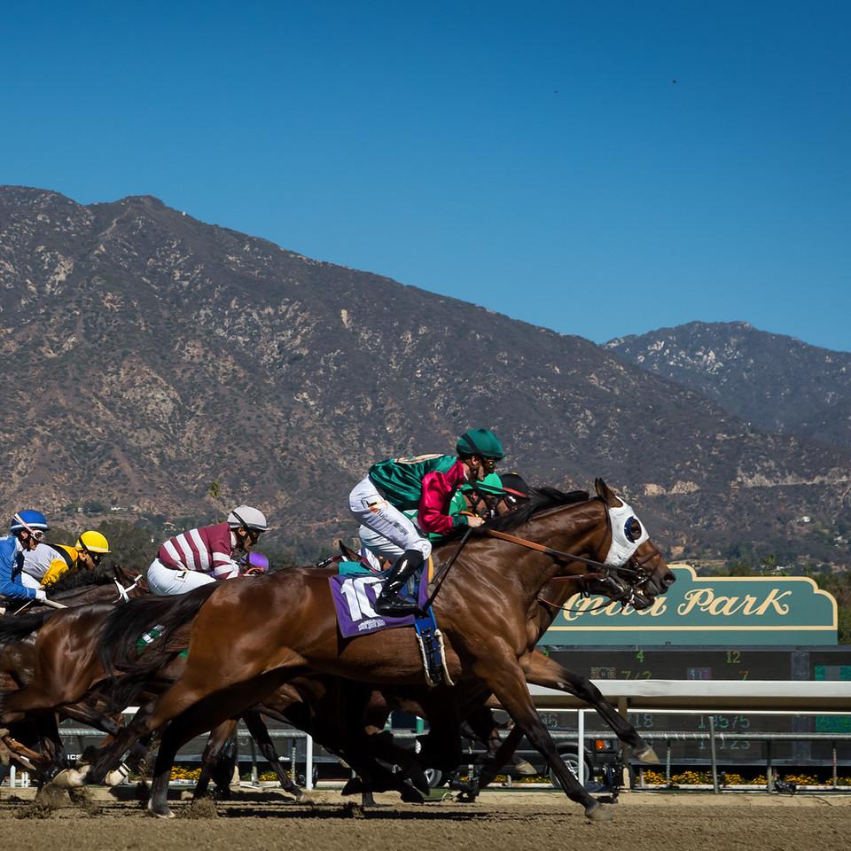 Santa Anita scenic 11.01.13.