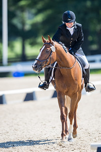 Winston & Wendy in the KDA Dressage Show at the Kentucky Horse Park 7.07.18.