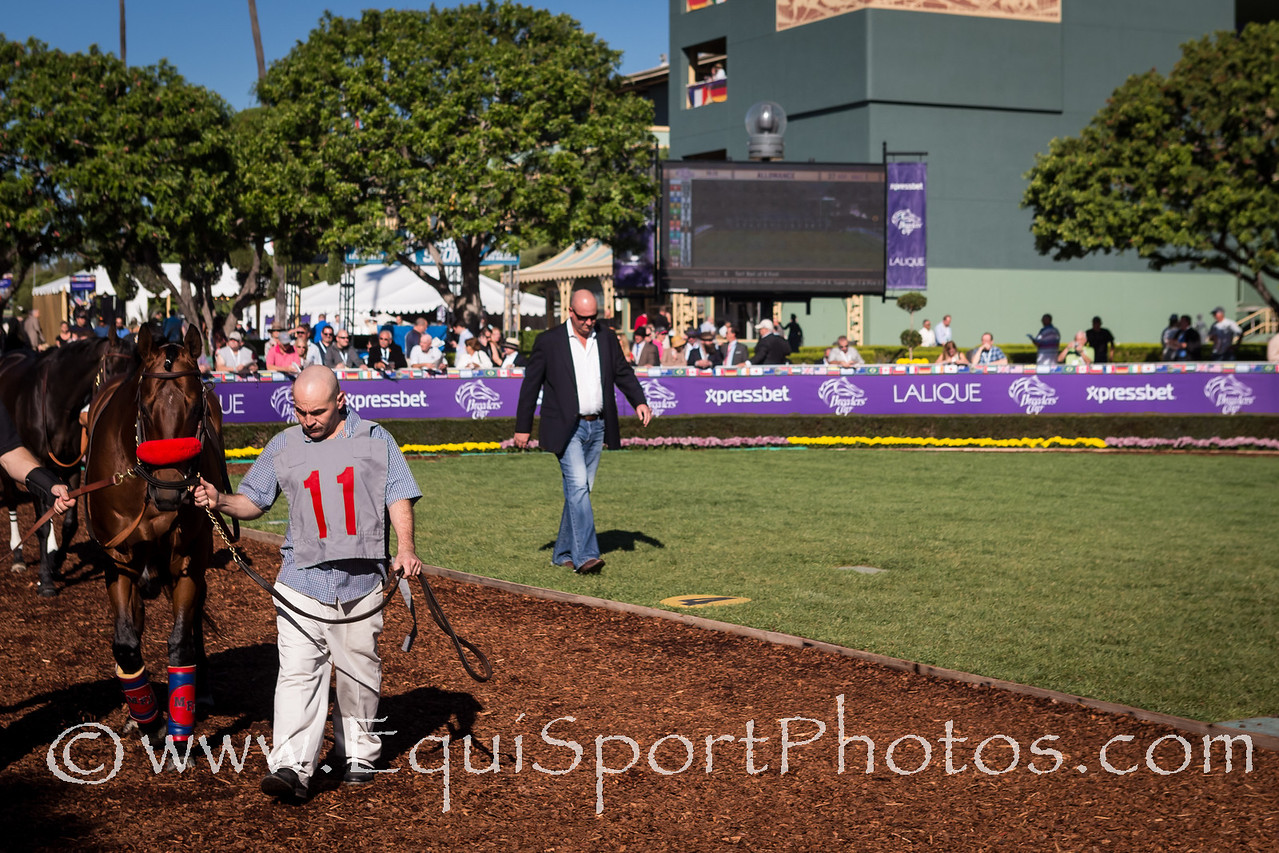 Scenic shots and Xpressbet presence at the Breeders' Cup 11.01.13.
