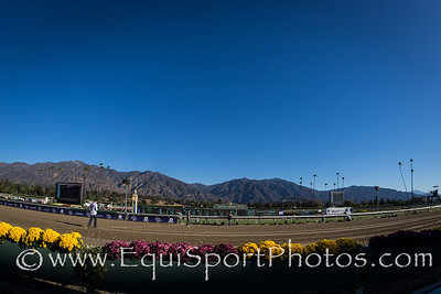 Scenic shots and Xpressbet presence at the Breeders' Cup 11.02.13.