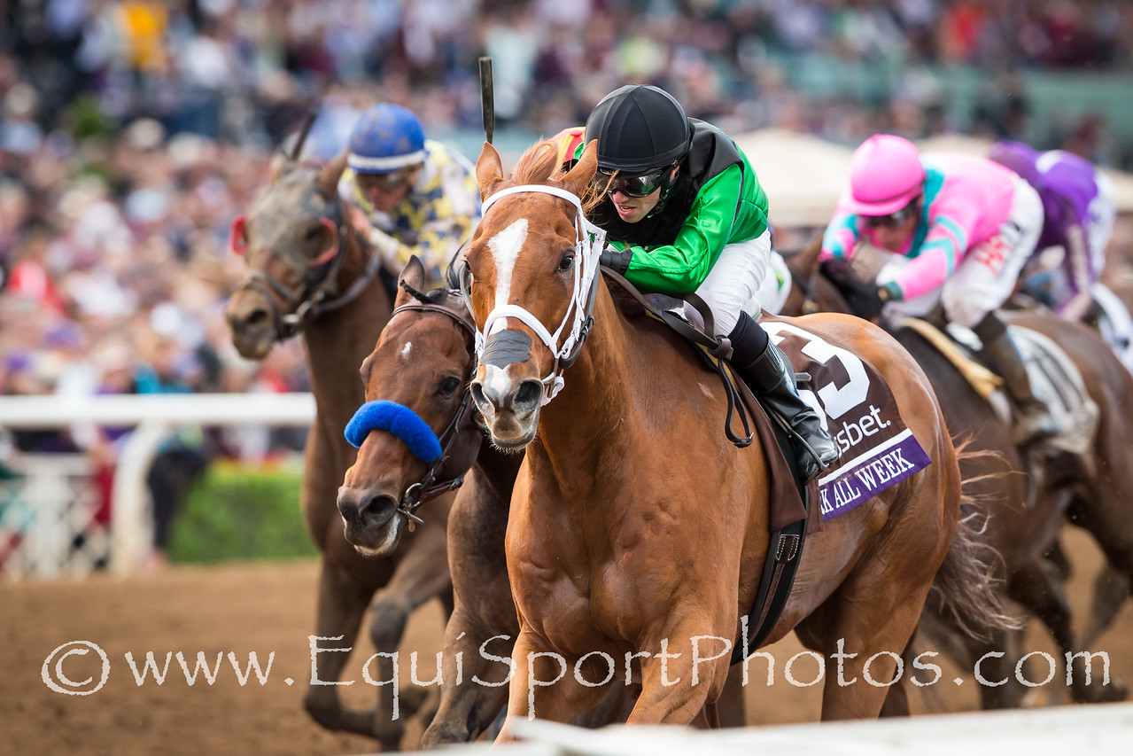Work All Week (City Zip) wins the Breeders' Cup Sprint at Santa Anita on 11.1.2014. Florent Geroux up, Roger Brueggermann trainer, Midwest Thoroughbreds owners.