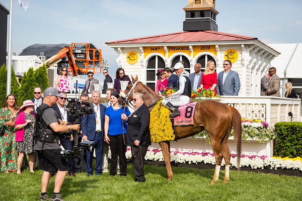 Point of Honor (Curlin) wins the Black-Eyed Susan at Pimlico on 5.17.2019. Javier Castellano up, George Weaver trainer, Eclipse Thoroughbred Partners owner.