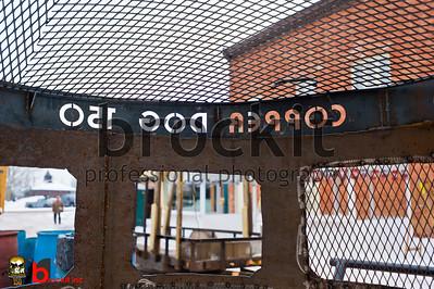copperdog 2011 b 133659