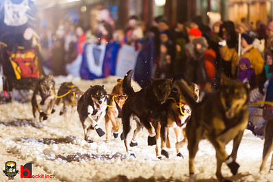 copperdog 150 - 2012 205351