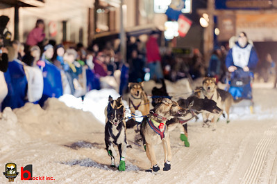 copperdog 150 - 2012 200354-1