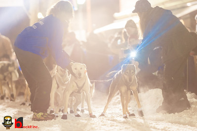 copperdog 150 - 2012 201523