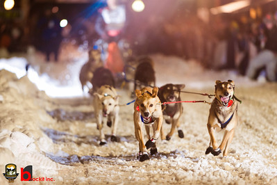 copperdog 150 - 2012 204749-2
