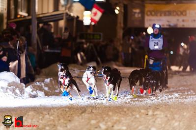 copperdog 150 - 2012 205548-1