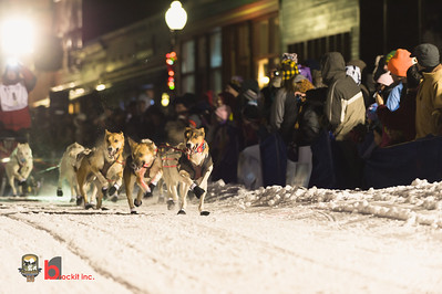 copperdog 2013 191437-5