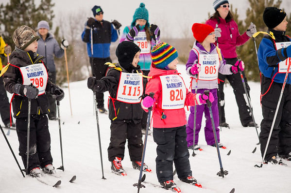 ski tigers Barnelopet 020815