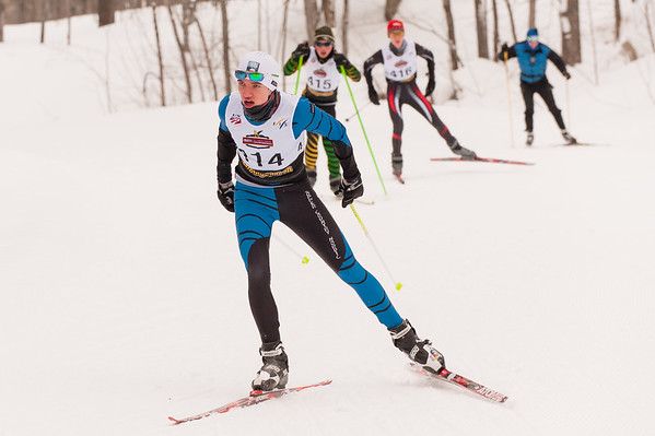ski tigers MHSS 2015