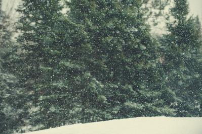 Ski Tigers Lakeland Invitational 121614 163228