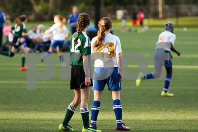Rosenwald Soccer 1-25-15-2068
