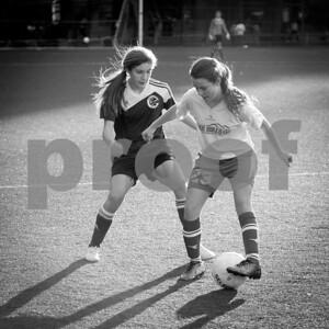 Rosenwald Soccer 1-25-15-2173