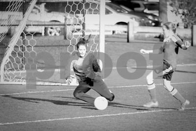 Rosenwald Soccer 1-25-15-1784