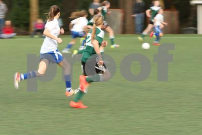 Rosenwald Soccer 1-25-15-2292