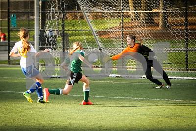 Rosenwald Soccer 1-25-15-2210