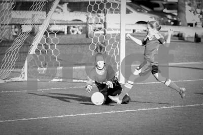 Rosenwald Soccer 1-25-15-1785
