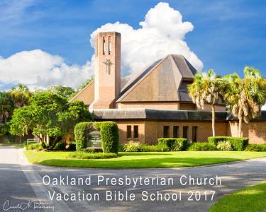 OPC Vacation Bible School 2017