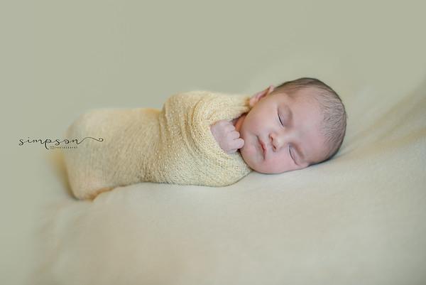 Baby Rosato