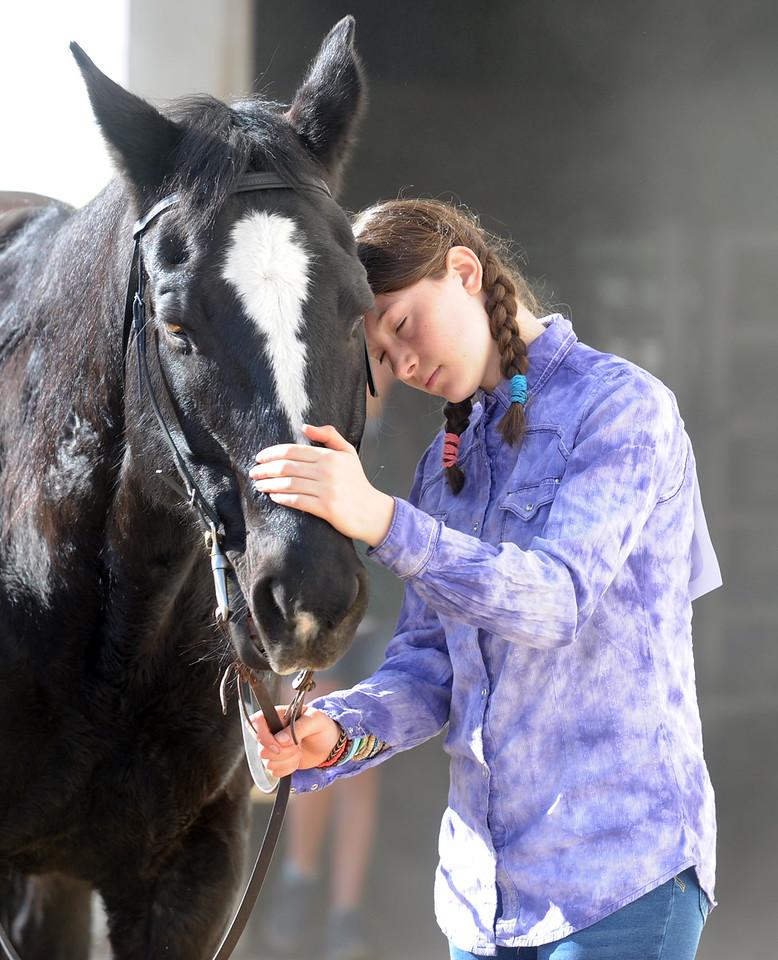 Boulder County Horse Association Fun Show