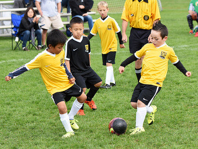 STAN HUDY - SHUDY@DIGITALFIRSTMEDIA.COM Two Clifton Park Youth Soccer Club players on the same team look to kick the ball during a U8 co-ed game Sunday, Oct. 8 at the Clifton Common during the 2016 Clifton Park Fall Soccer Classic.