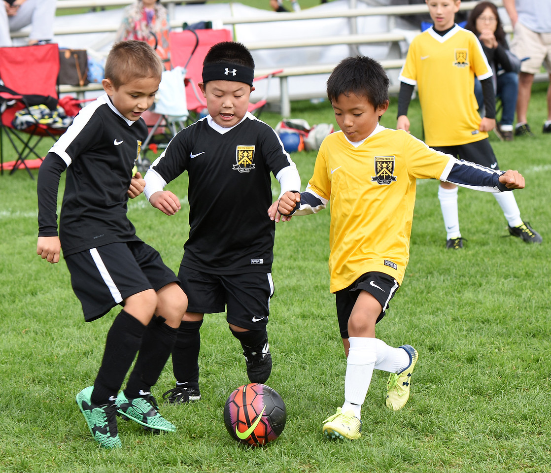 STAN HUDY - SHUDY@DIGITALFIRSTMEDIA.COMSeveral Clifton Park Youth Soccer Club players converge on the ball during a U8 co-ed game Sunday, Oct. 8 at the Clifton Common during the 2016 Clifton Park Fall Soccer Classic.