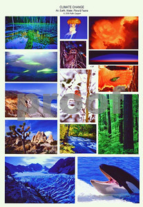 Illustrations of climate change using air, earth, water, flora and fauna as natural elements of the environment that will show change with the advances of climate change.
