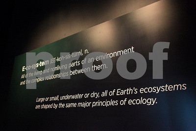 Ecosystem defined, California ScienCenter, Los Angeles, CA