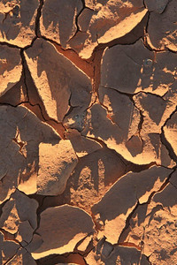Dried mud 9518