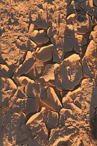Dried mud 9517