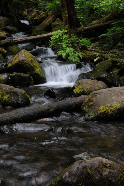 Eagle Creek June 2010