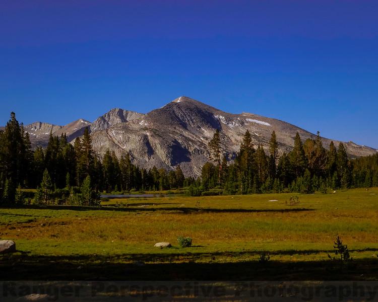 Mammoth Peak from Mount Dana Trail at Dana Meadows