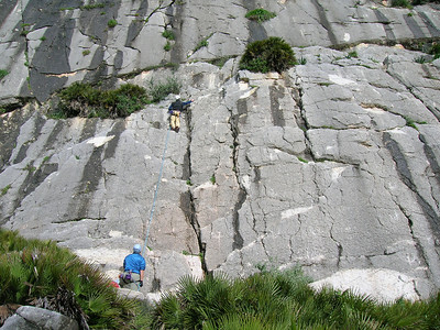 Climbing-Walking