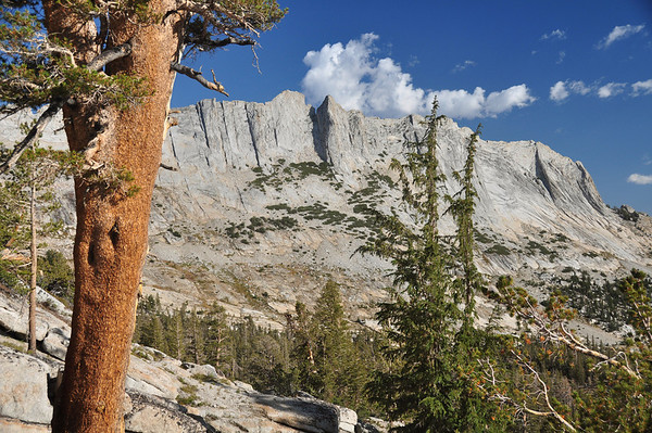 Tuolumne and East Side - 2009