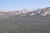 Lyell Glacier